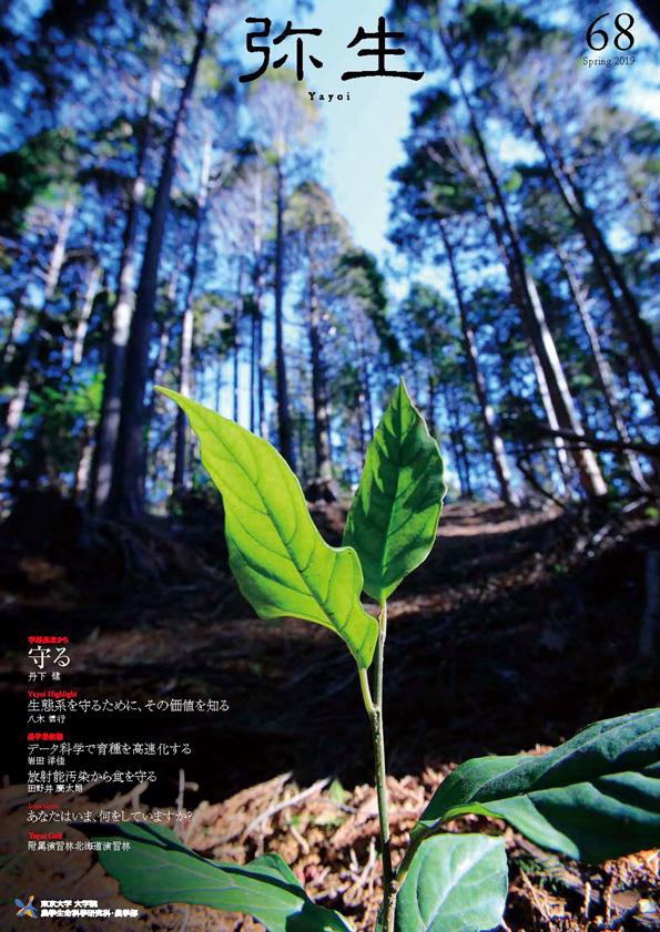弥生No.68(PDF)
