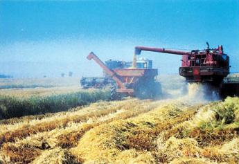 大型コンバインによる穀物収穫。収穫期が短いので一気に作業を行わねばならない。