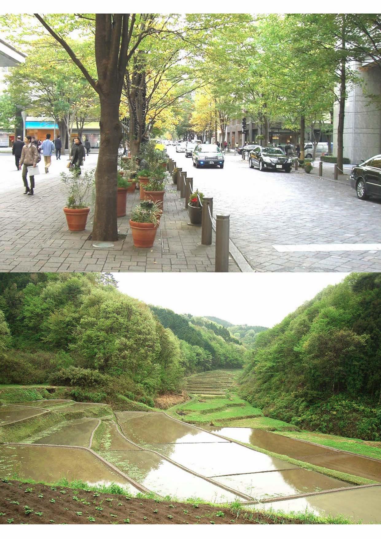 暮らしにうるおいを与える都市の緑(上)多様な生物の営みを支える里山ランドスケープ(下)